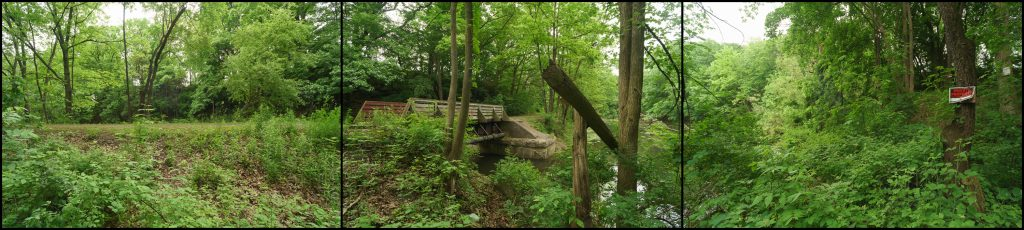 green landscape with small bridge over a creek
